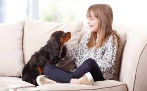 Good Doggie - heureka - prodejna - kde koupit - lékárna